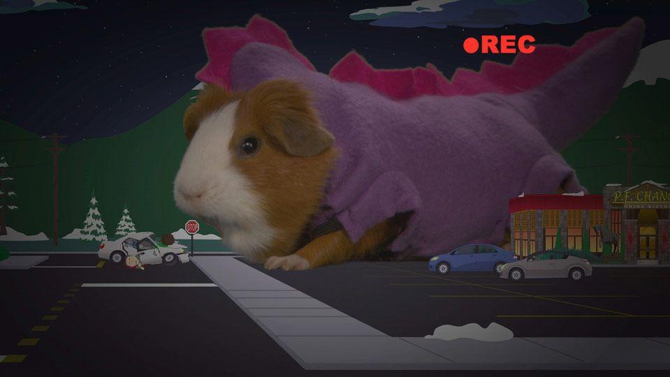 Guinea Pig Pirate Costume & Guinea Pig Onesie By Bcozy Sc 1